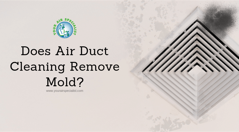 Can Duct Cleaning Services eliminate Molds