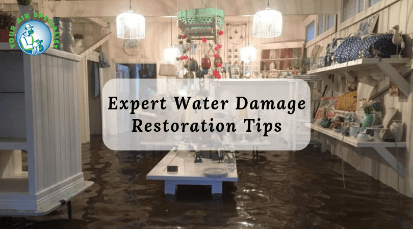 Expert Water Damage Restoration Tips