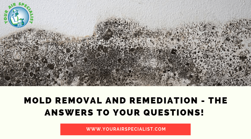Mold Removal and Remediation - The Answers to Your Questions!