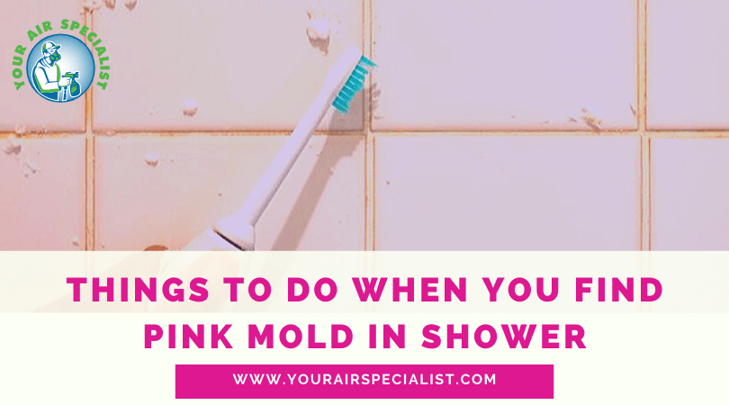 Things To Do When You Find Pink Mold In Shower