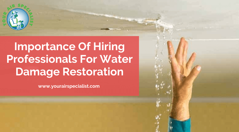 Importance Of Hiring Professionals For Water Damage Restoration