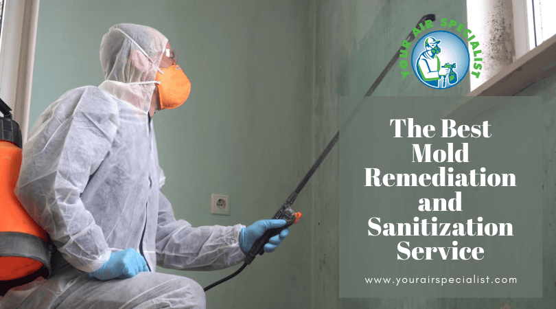 The Best Mold Remediation and Sanitization Service