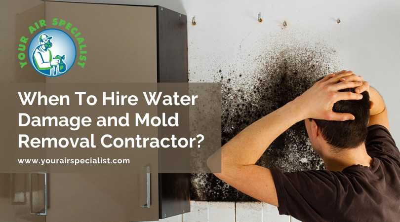 When To Hire Water Damage and Mold Removal Contractor