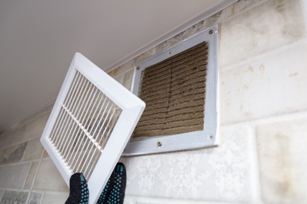 Air Duct Cleaning Specialists Checking Air Duct