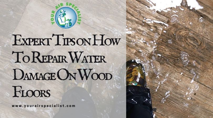 Expert Tips on How To Repair Water Damage On Wood Floors